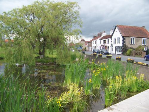 Main Street viewed from the pond